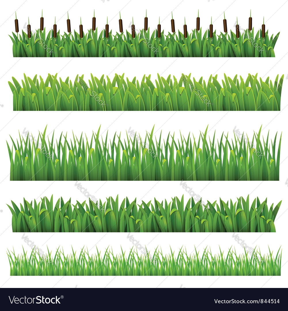 Grass green border vector | Price: 3 Credit (USD $3)