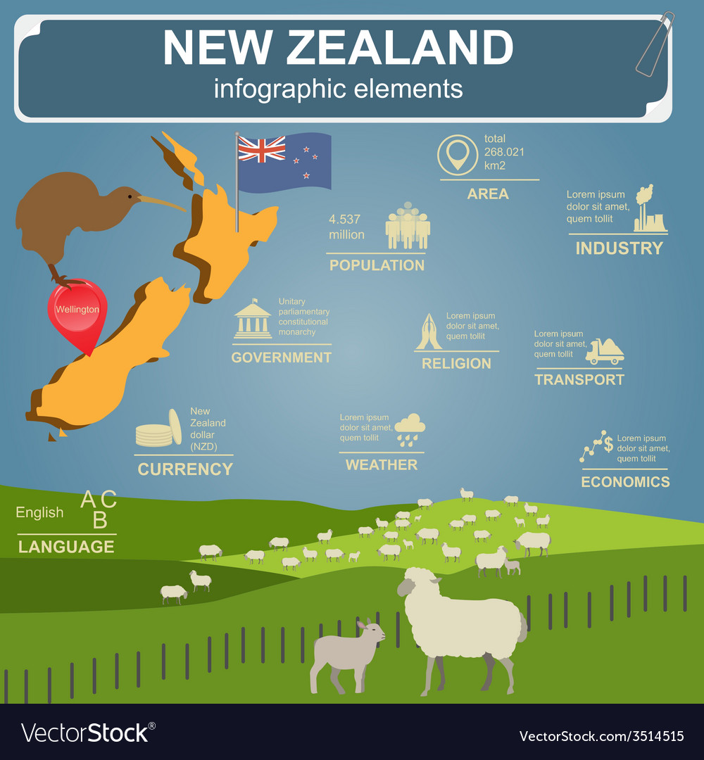 New zealand infographics statistical data sights vector
