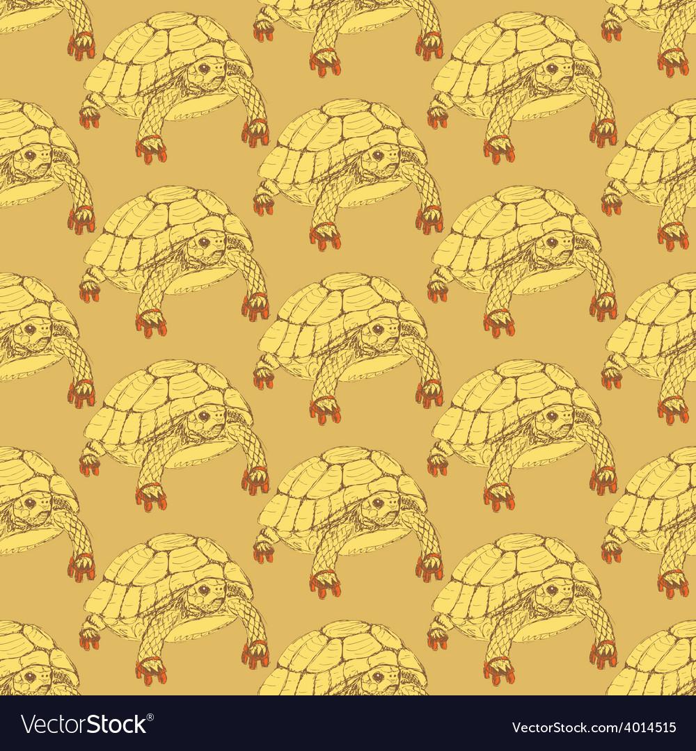 Sketch fancy turtle in vintage style vector | Price: 1 Credit (USD $1)