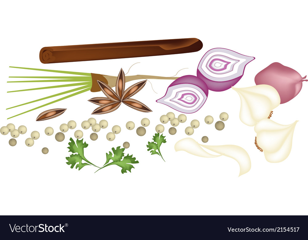 Heap of chinese spices on white background vector | Price: 1 Credit (USD $1)