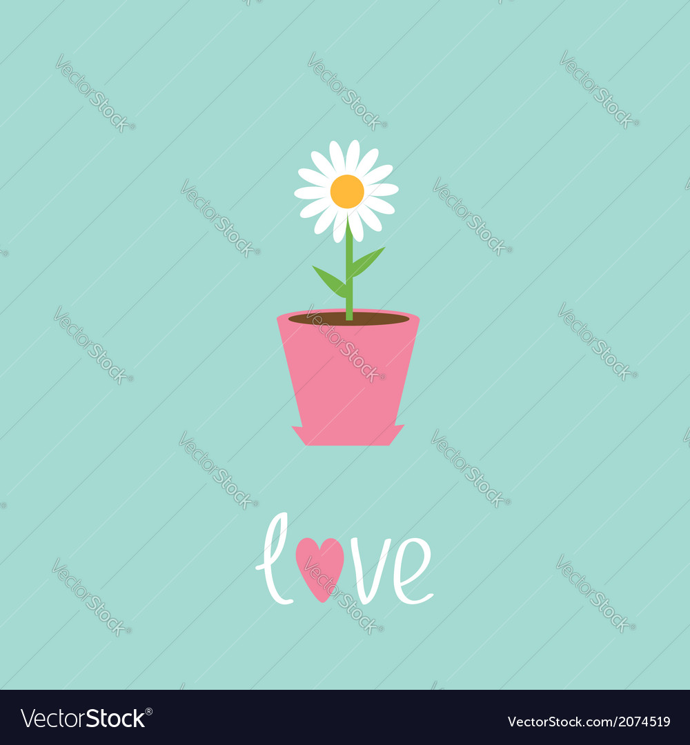 Daisy in pot love card vector | Price: 1 Credit (USD $1)