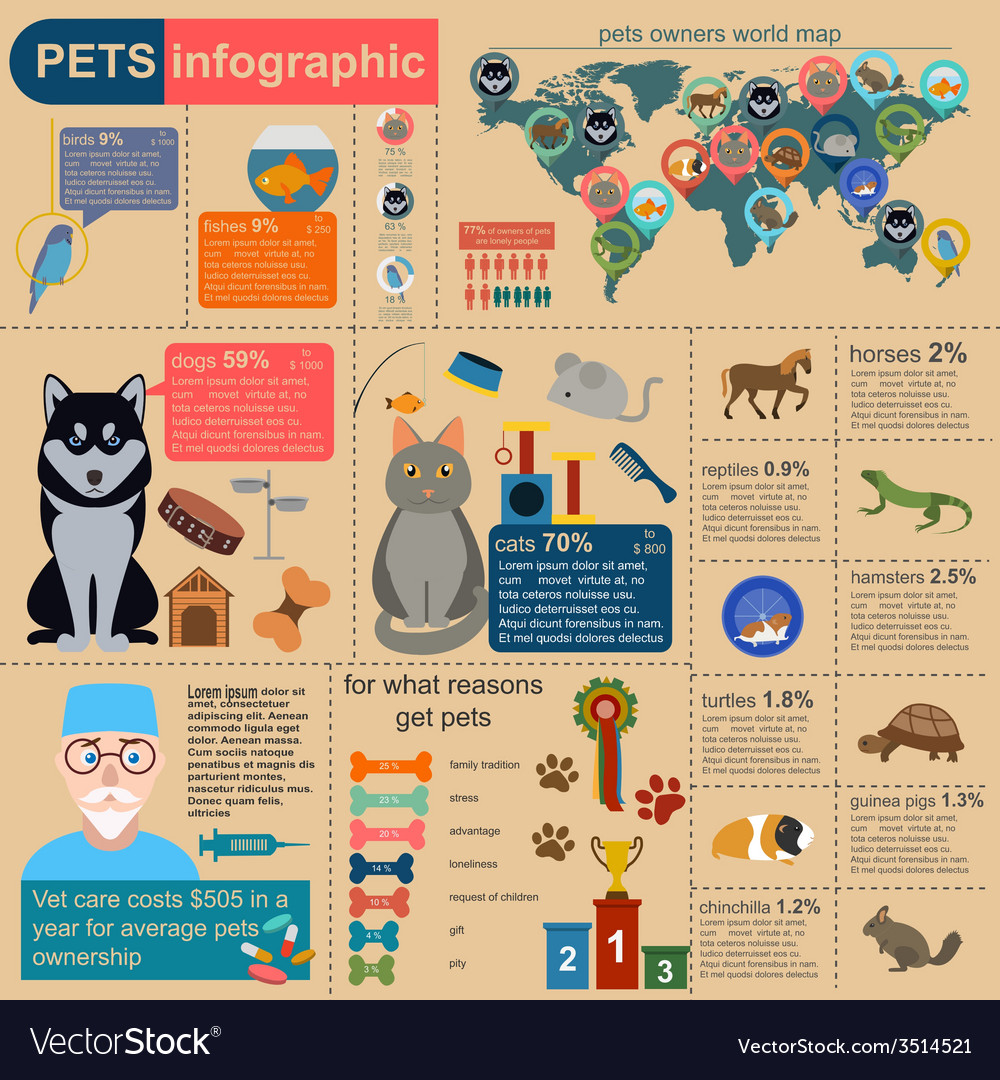 Domestic pets infographic elements helthcare vet vector | Price: 1 Credit (USD $1)