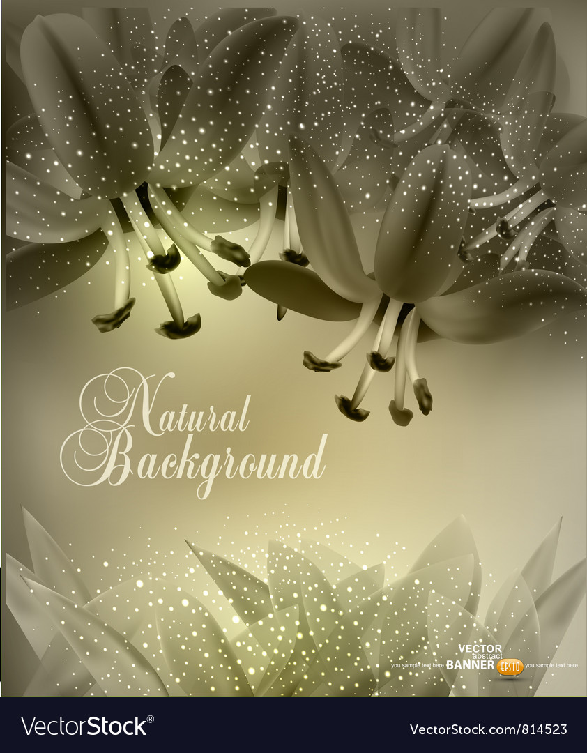 Floral congratulatory background vector | Price: 3 Credit (USD $3)