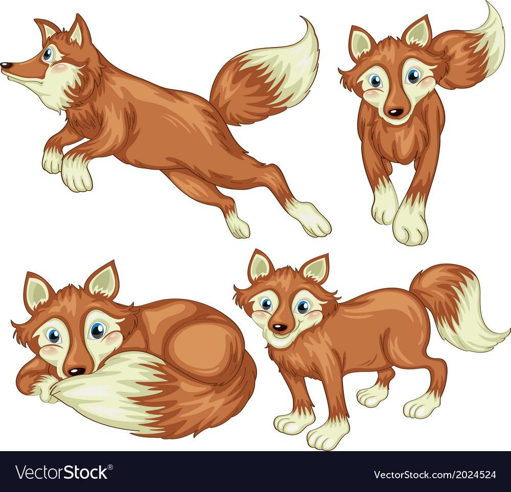 Four foxes vector | Price: 3 Credit (USD $3)