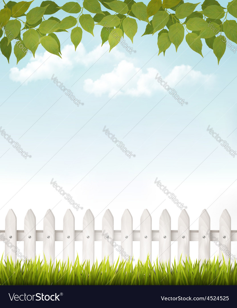 Nature background with green leaves and white vector | Price: 3 Credit (USD $3)