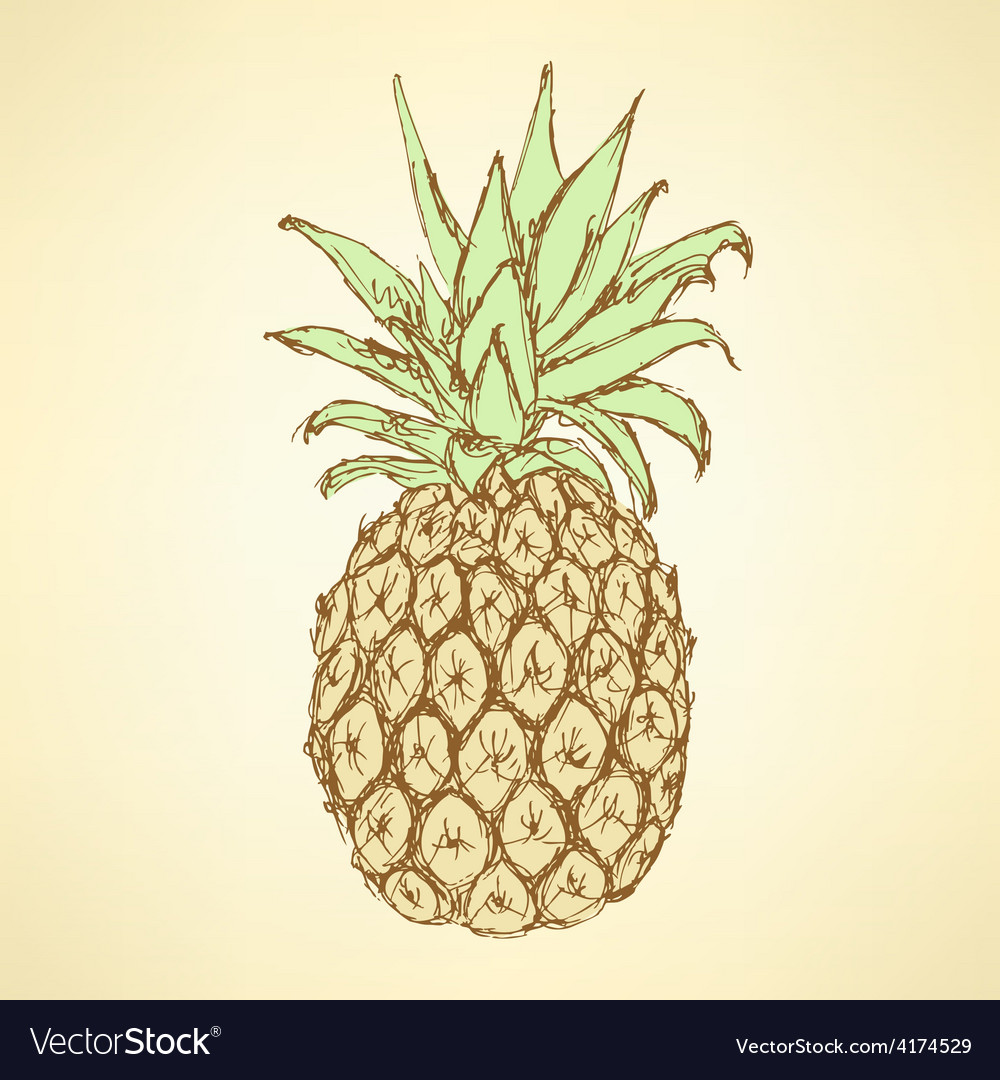 Sketch tasty pineapple in vintage style vector | Price: 1 Credit (USD $1)