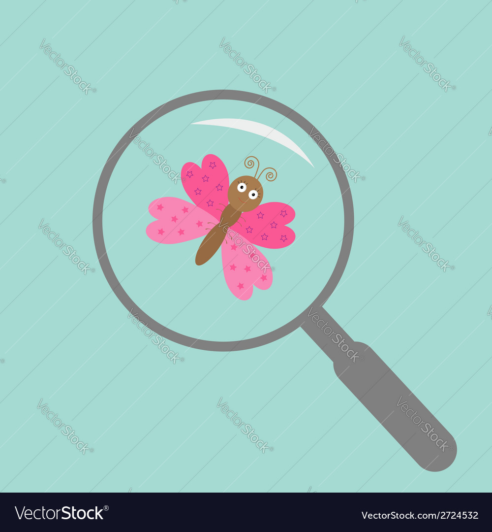 Butterfly insect under magnifier zoom lense flat vector | Price: 1 Credit (USD $1)