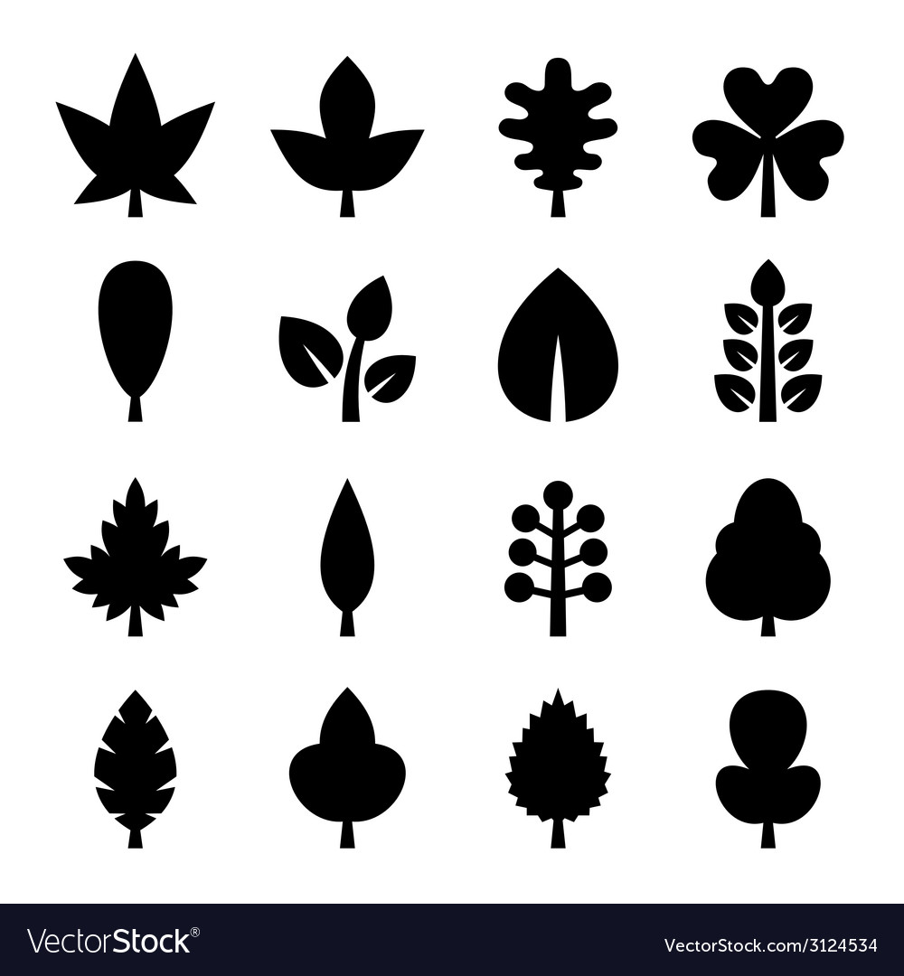 Leaf icons set vector | Price: 1 Credit (USD $1)