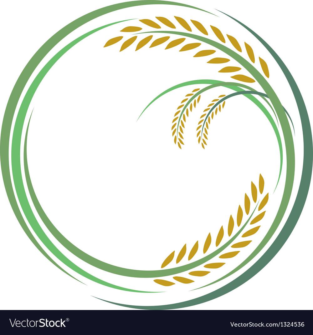 Rice design vector   Price: 1 Credit (USD $1)