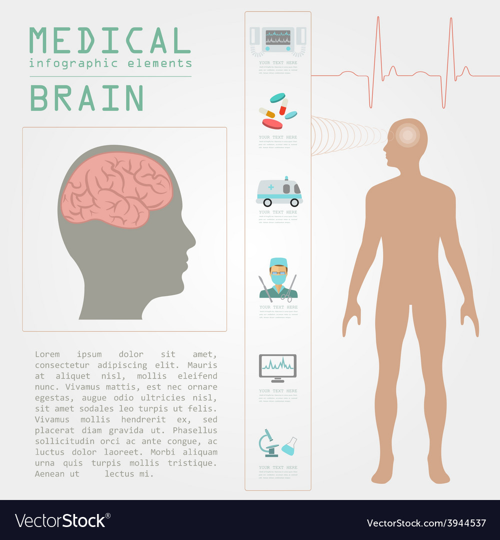 Medical and healthcare infographic brain vector | Price: 1 Credit (USD $1)