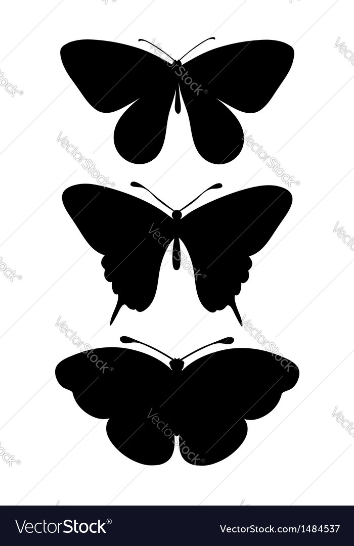 Set of black silhouettes of butterflies vector | Price: 1 Credit (USD $1)
