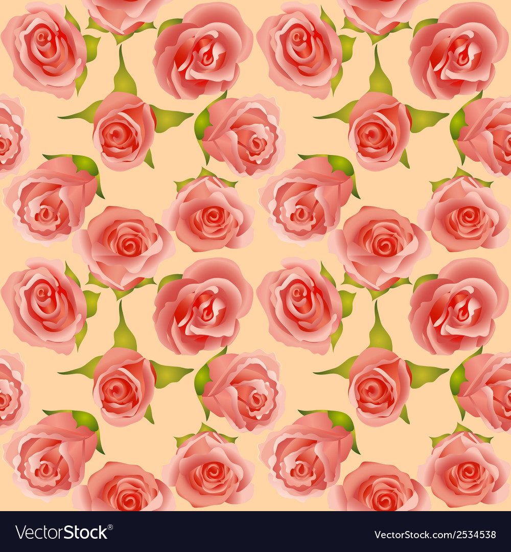 Summer background with delicate roses vector | Price: 1 Credit (USD $1)