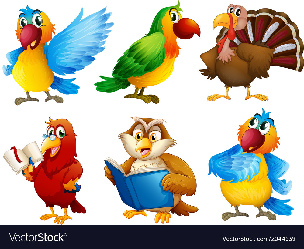 Colourful feathered creatures vector | Price: 3 Credit (USD $3)