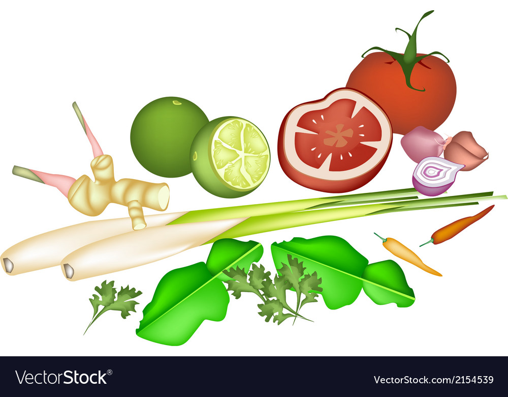 Tom yum soup ingredient on white background vector | Price: 1 Credit (USD $1)