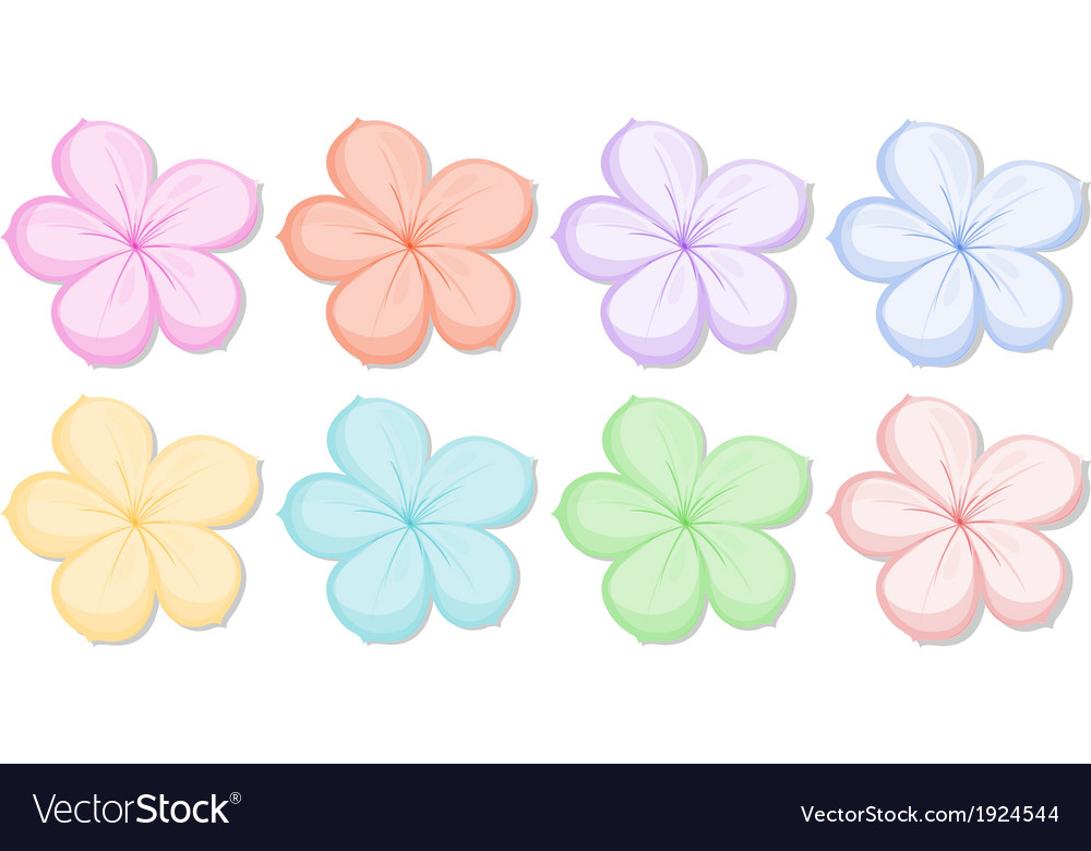 Eight five-petal flowers in different colors vector | Price: 1 Credit (USD $1)