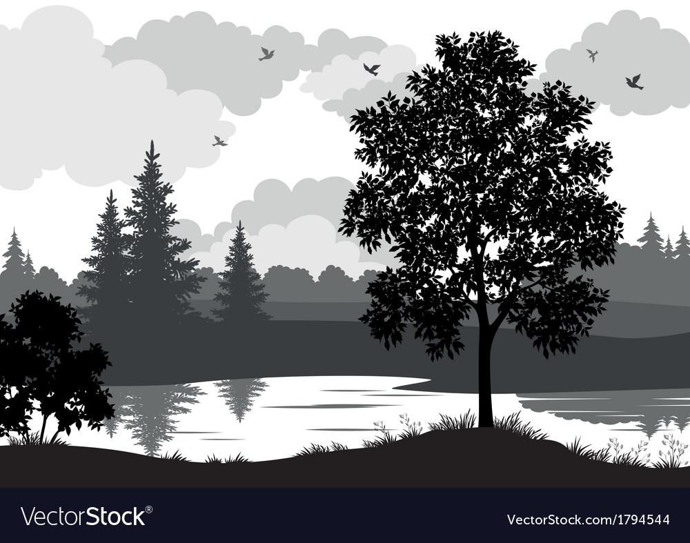 Landscape trees river and birds silhouette vector | Price: 1 Credit (USD $1)