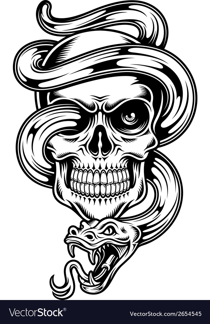 Skull with snake vector | Price: 1 Credit (USD $1)