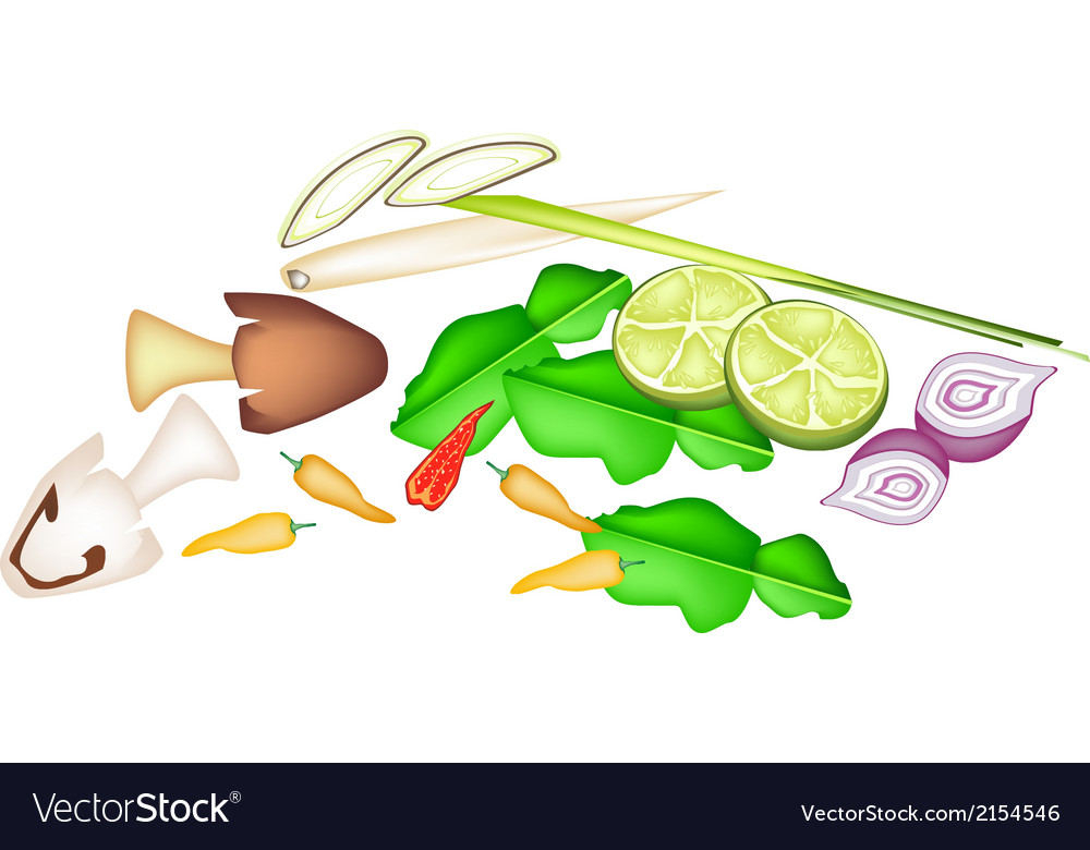 Stack of tom yum ingredient on white background vector | Price: 1 Credit (USD $1)