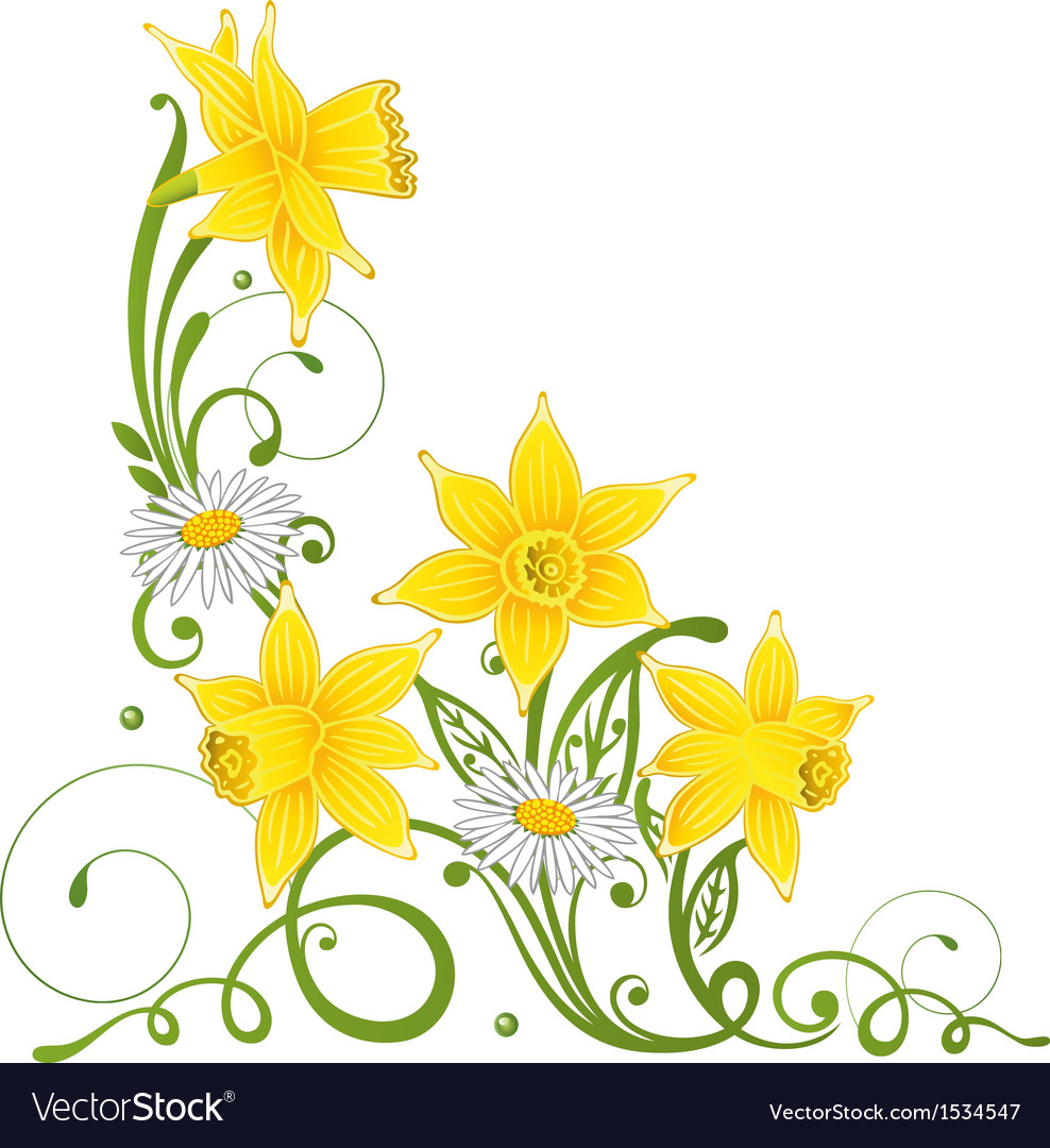 Easter daffodils daisy vector | Price: 1 Credit (USD $1)