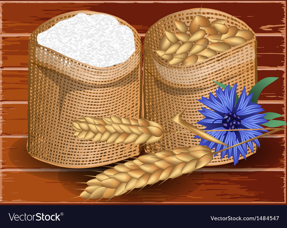 Wheat and flour vector | Price: 1 Credit (USD $1)