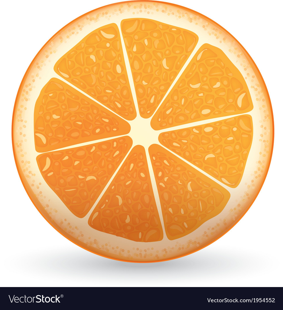 Sliced orange vector | Price: 1 Credit (USD $1)