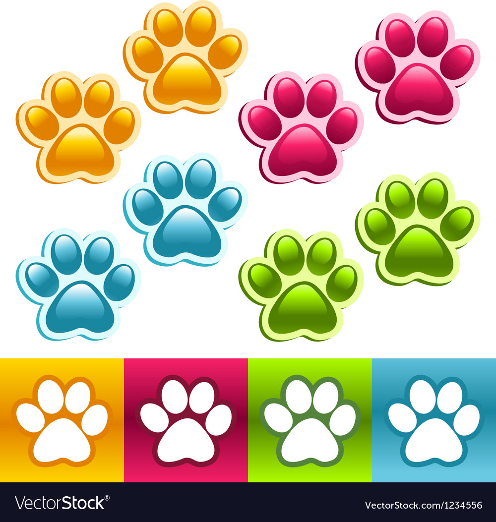 Colorful animal paws vector | Price: 1 Credit (USD $1)
