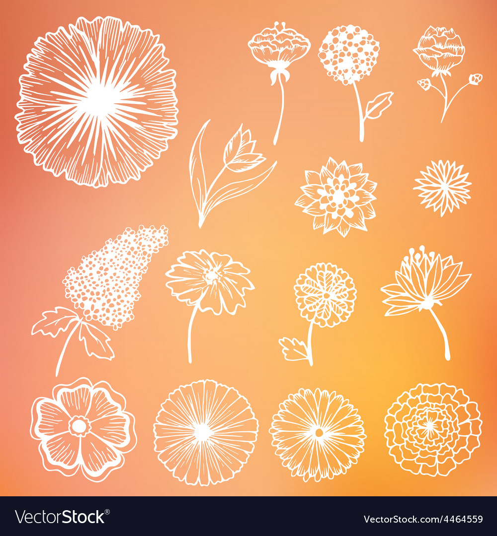 Stylish beautiful flower set on blurred vector | Price: 1 Credit (USD $1)