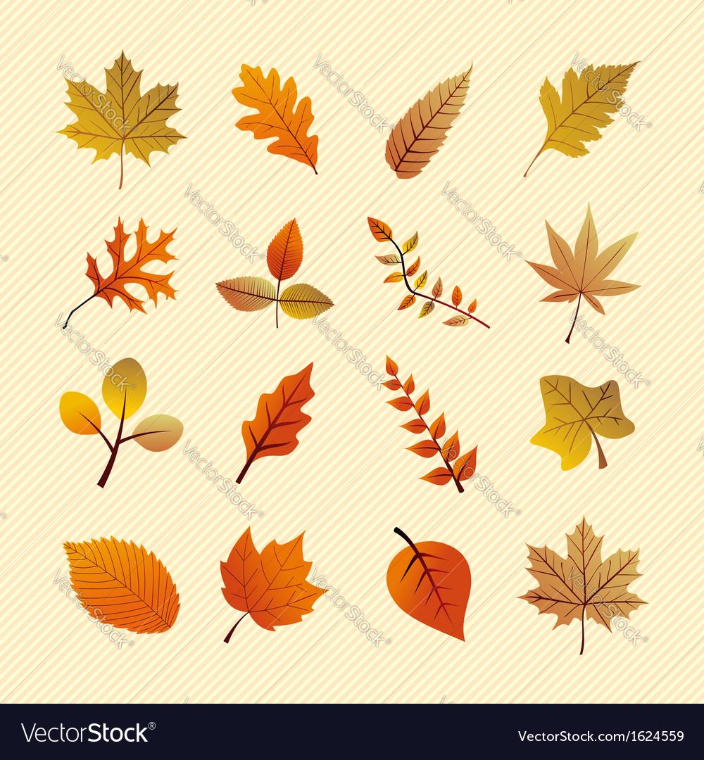 Vintage autumn season tree leaves set eps10 file vector | Price: 1 Credit (USD $1)