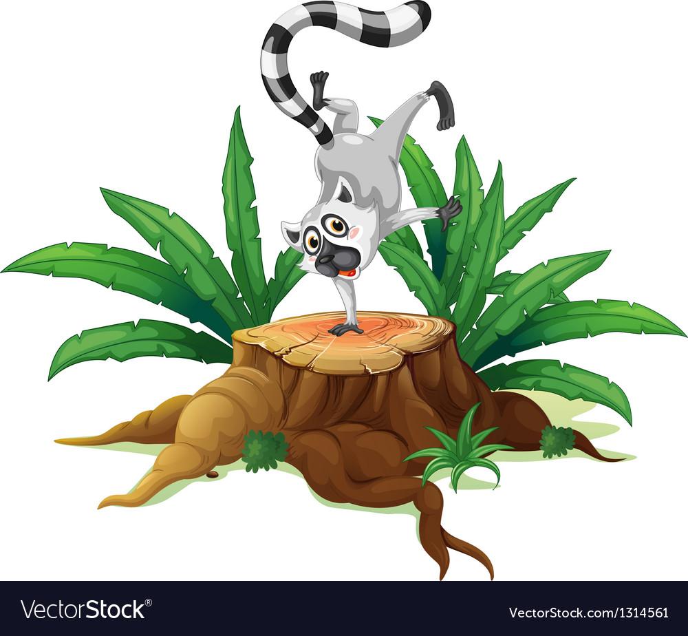 A playful lemur above a stump vector | Price: 1 Credit (USD $1)