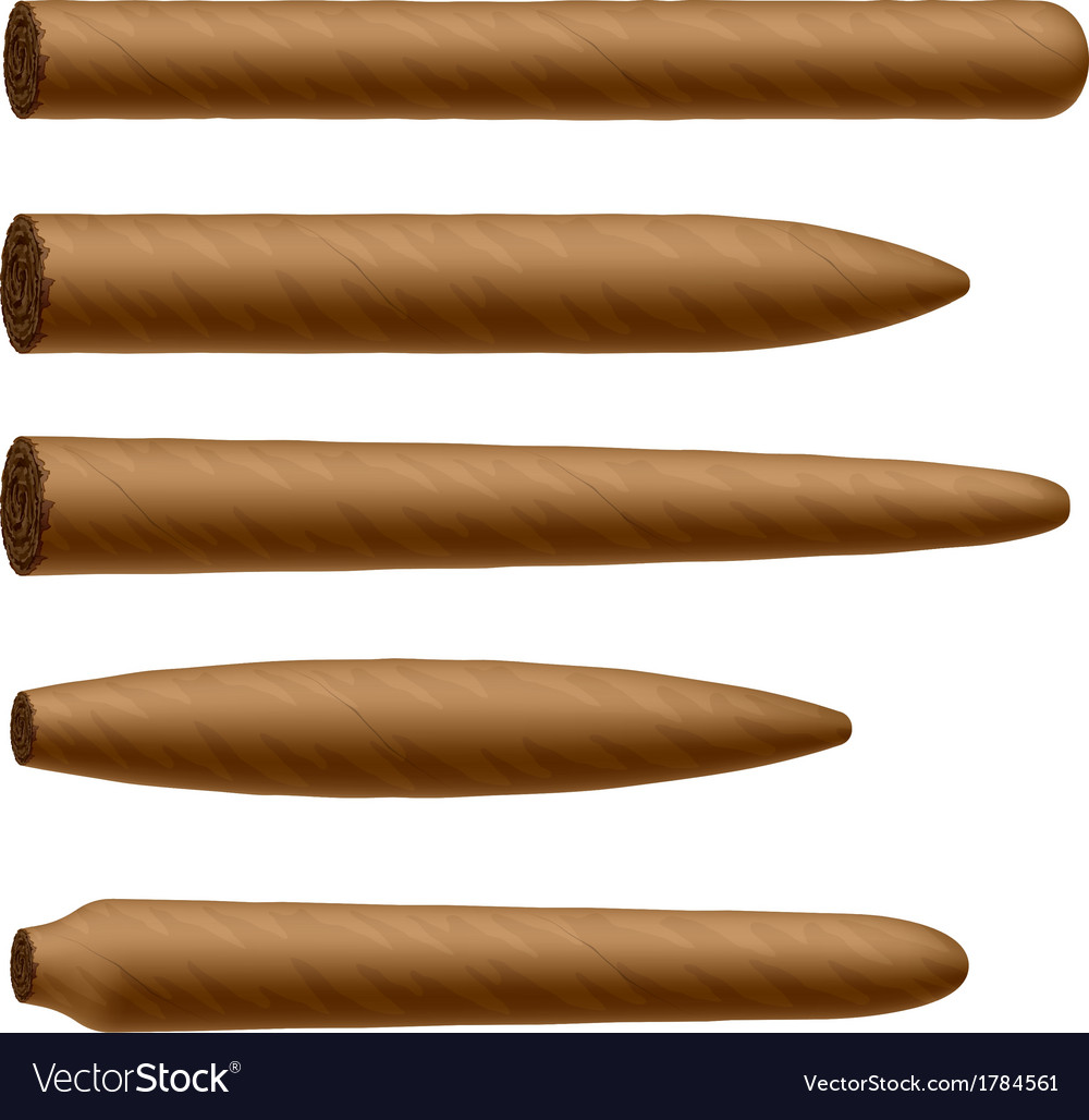 Cigar shapes vector | Price: 1 Credit (USD $1)
