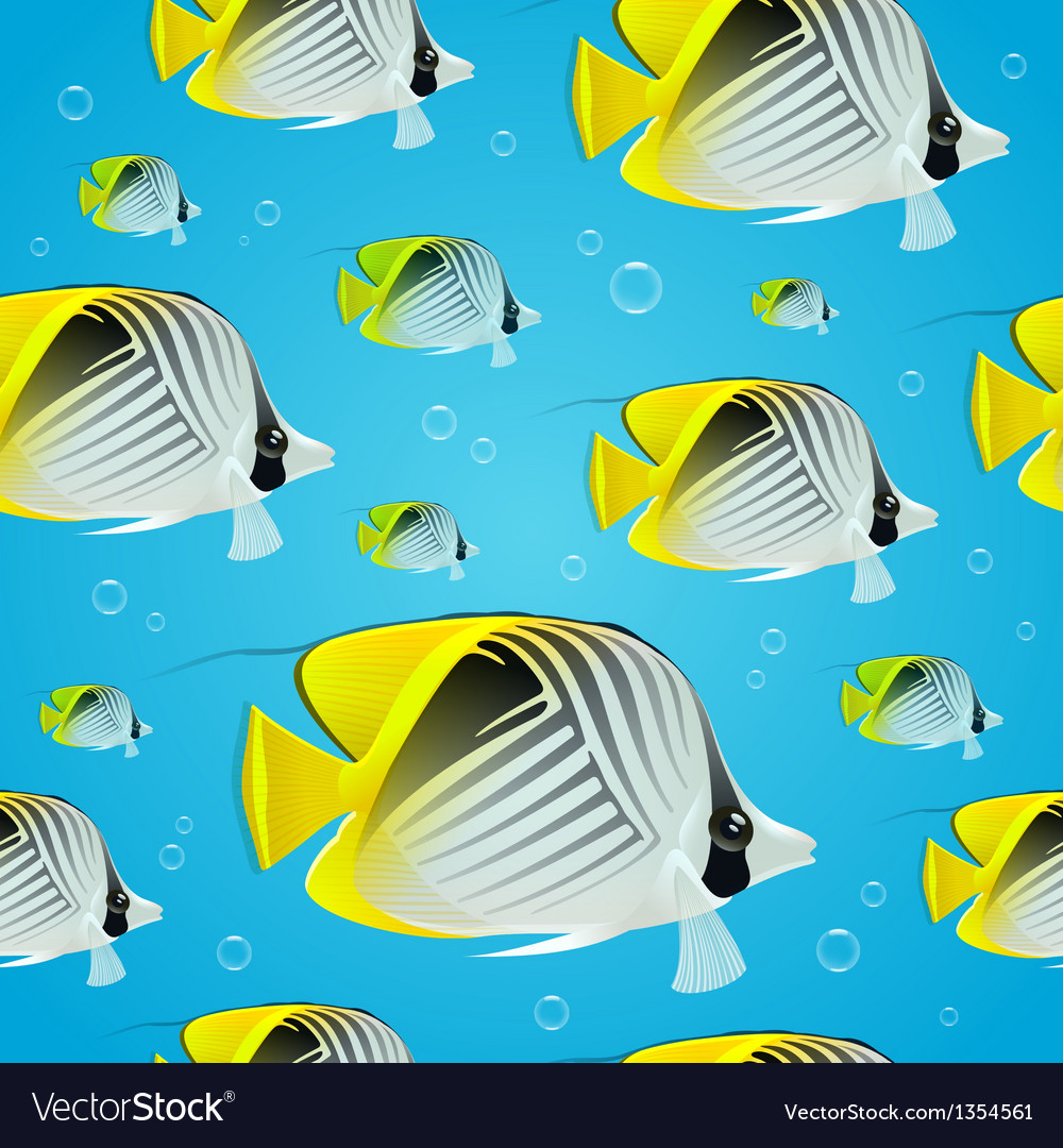 Seamless background - tropical butterflyfish vector | Price: 3 Credit (USD $3)