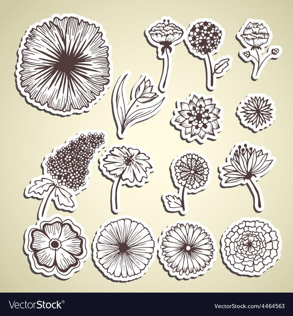 Stylish beautiful flower set sticker background vector | Price: 1 Credit (USD $1)