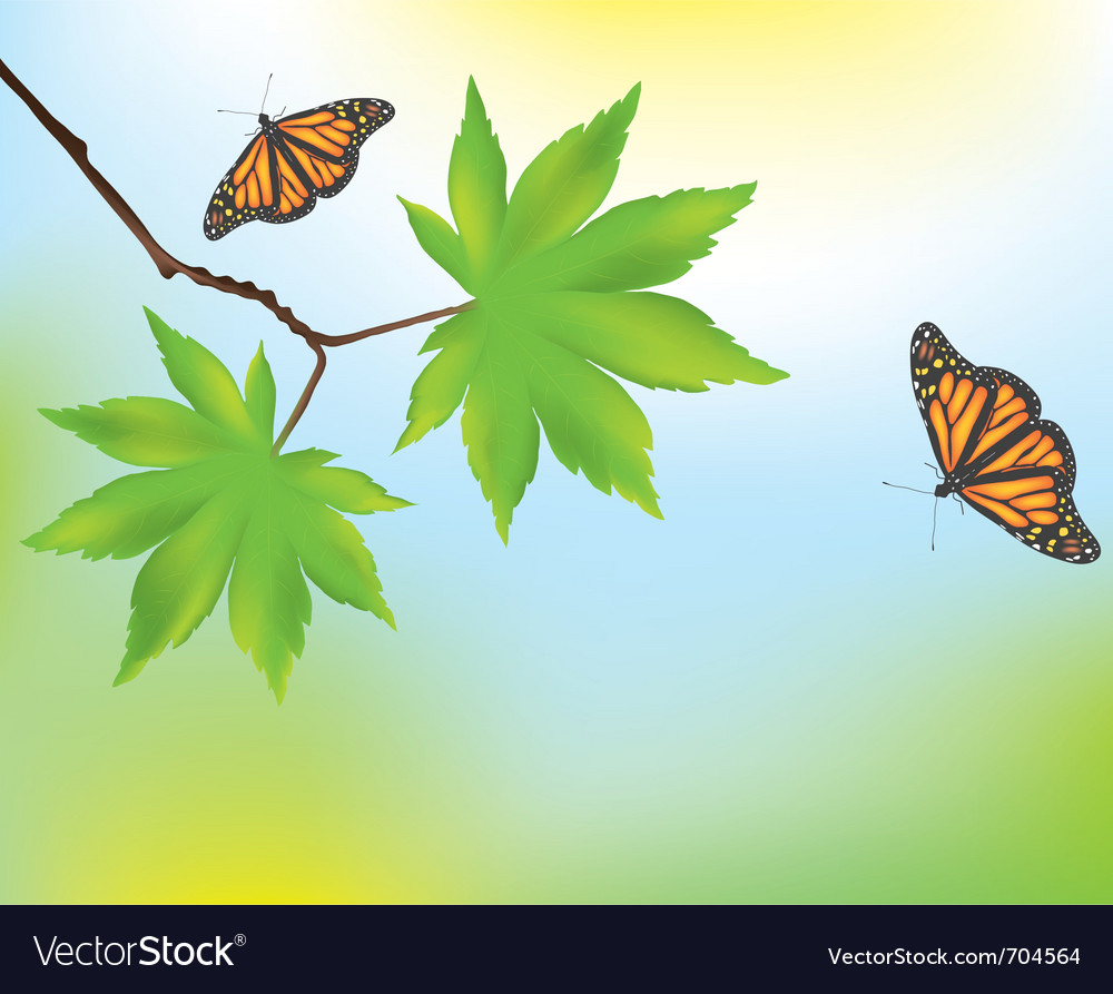 Maple leaves and butterflies vector | Price: 1 Credit (USD $1)