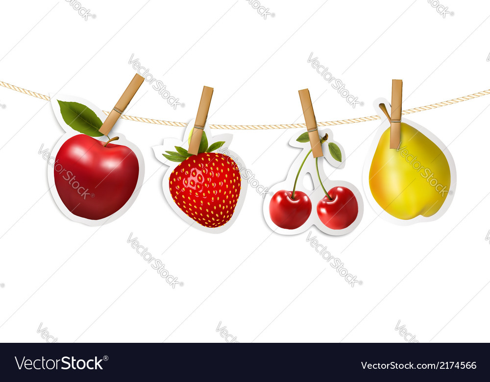 Fruit stickers hanging on a rope vector | Price: 1 Credit (USD $1)