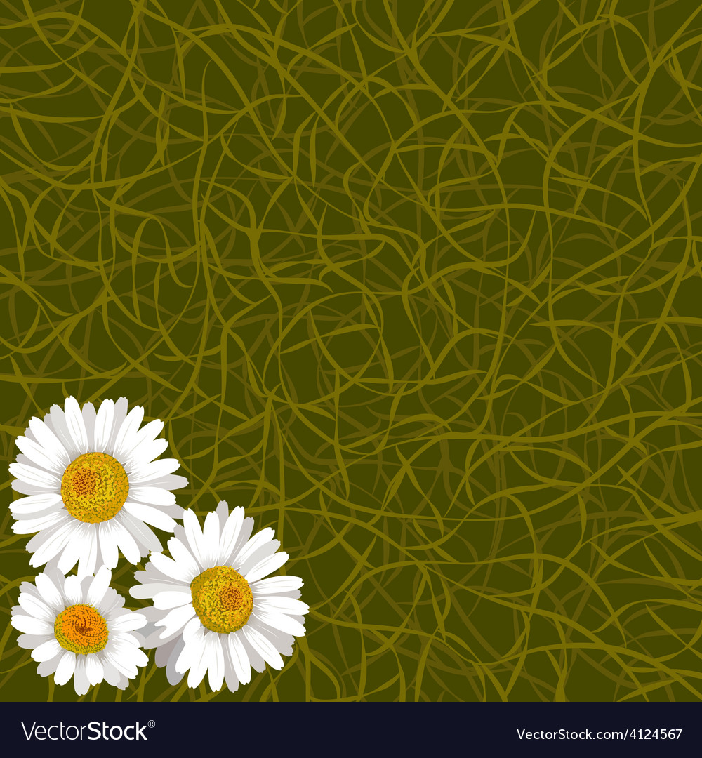 Background from grass and flowers of camomile vector | Price: 1 Credit (USD $1)