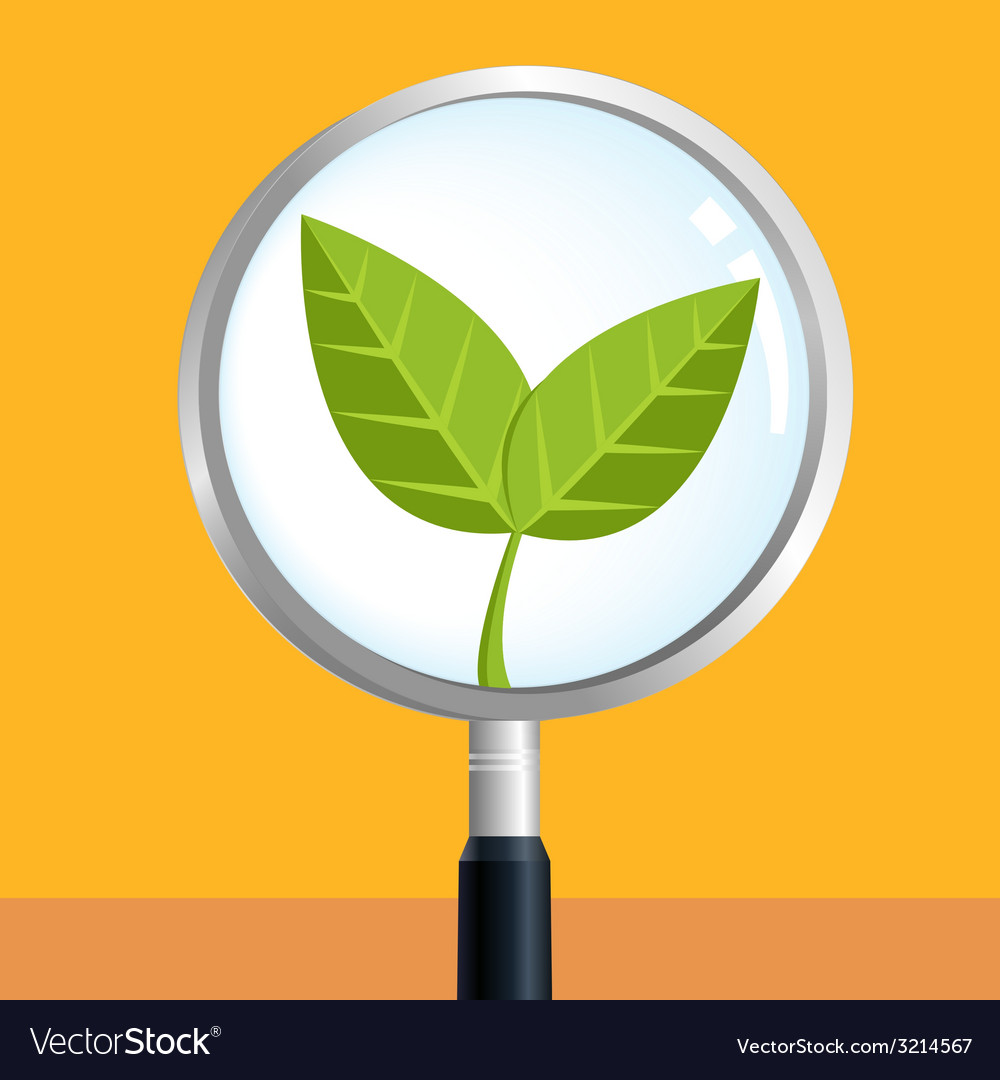 Leafsearch vector | Price: 1 Credit (USD $1)