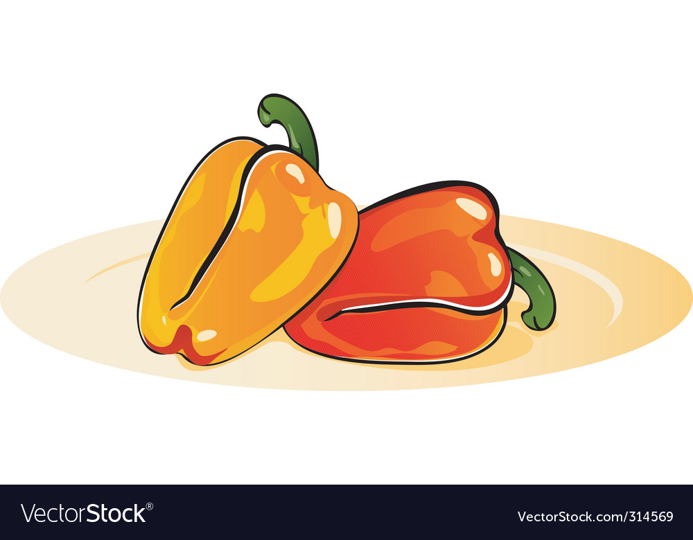 Capsicum vector | Price: 1 Credit (USD $1)