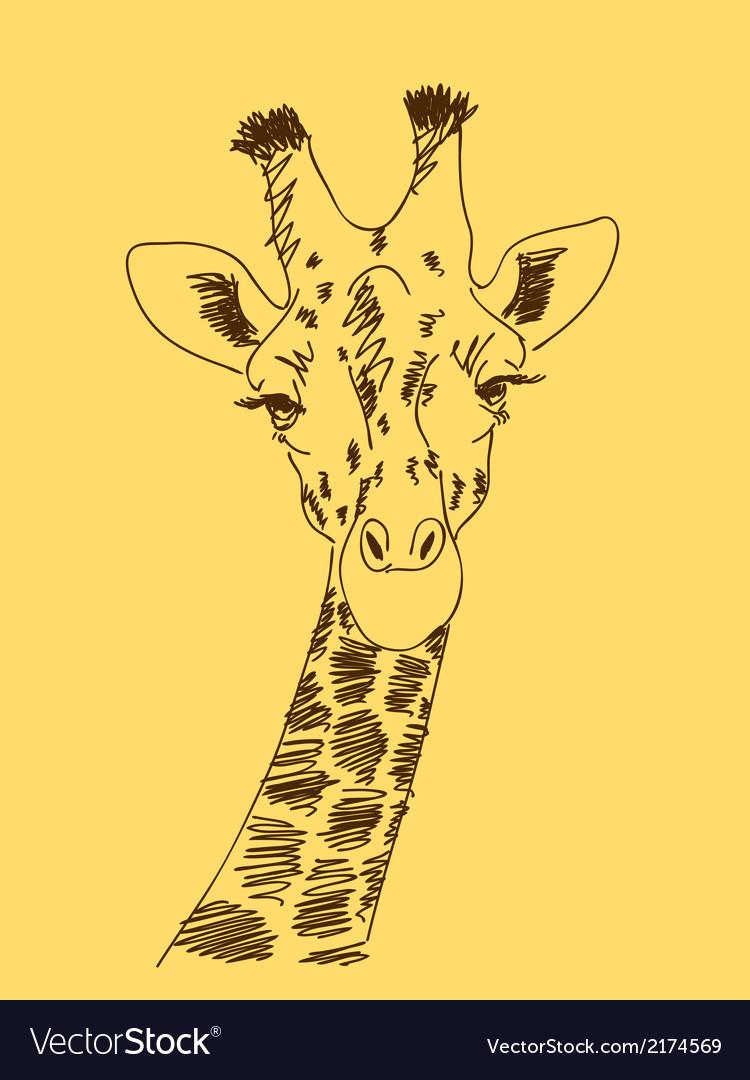 Hand drawn giraffe vector   Price: 1 Credit (USD $1)