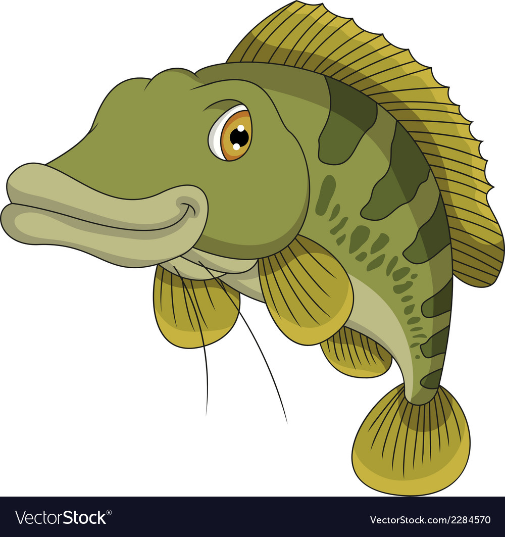 Bass fish cartoon vector | Price: 1 Credit (USD $1)