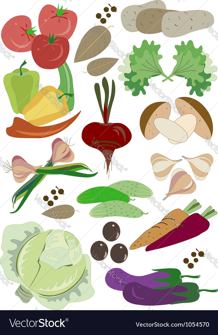 Colorful fresh group of vegetables vector | Price: 1 Credit (USD $1)