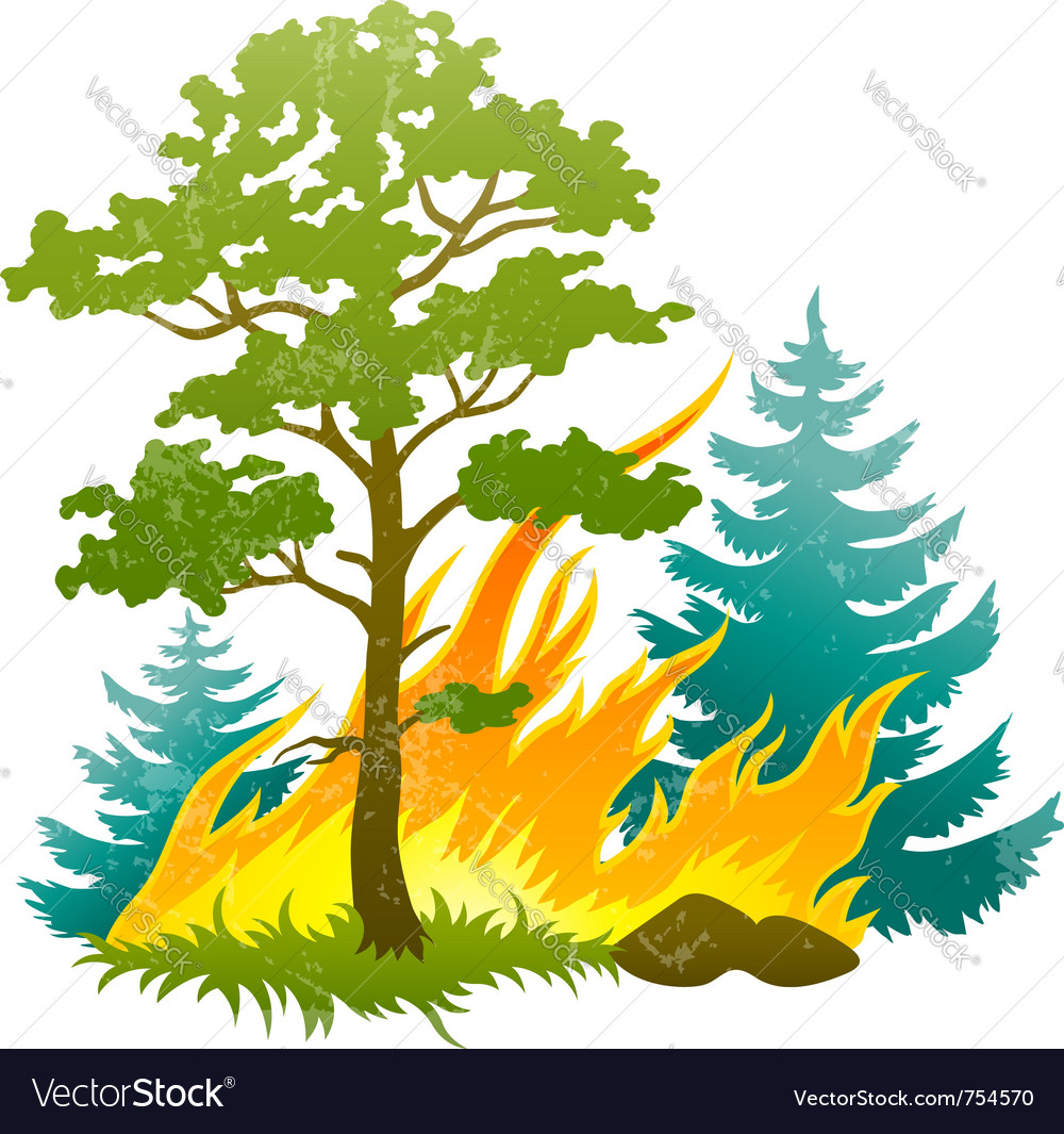 Wildfire disaster with vector | Price: 1 Credit (USD $1)