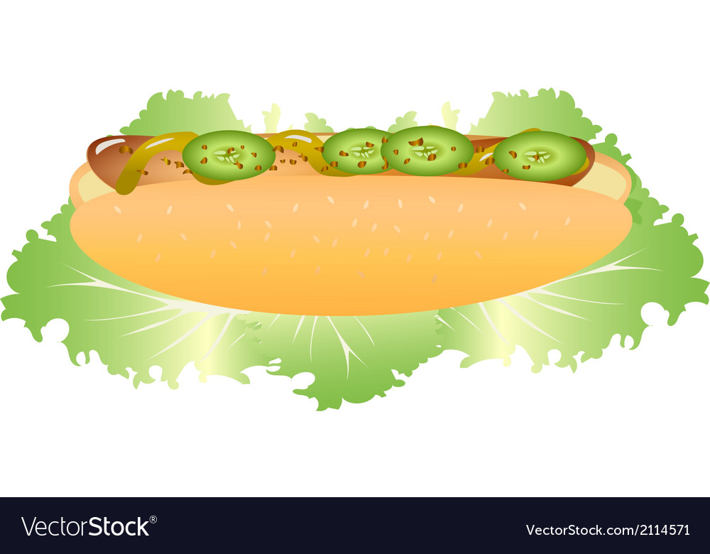 Hot dog with lettuce vector | Price: 1 Credit (USD $1)