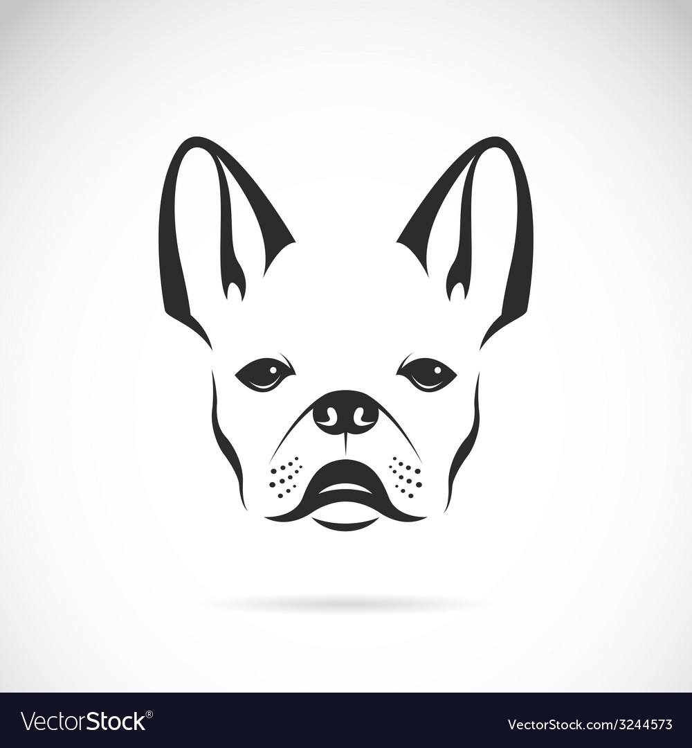 Image of an dog bulldog vector | Price: 1 Credit (USD $1)