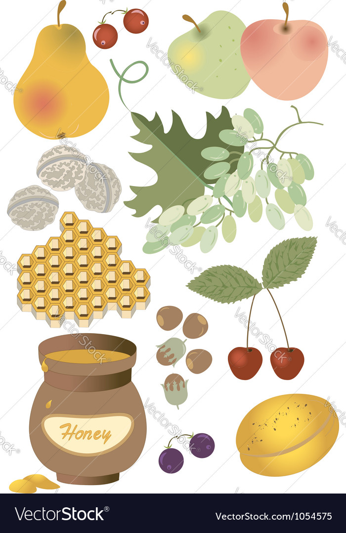 Wholesome food summer vector | Price: 1 Credit (USD $1)