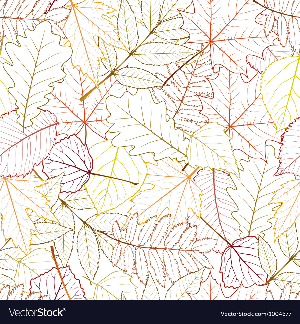 Seamless with autumn leaves vector | Price: 1 Credit (USD $1)