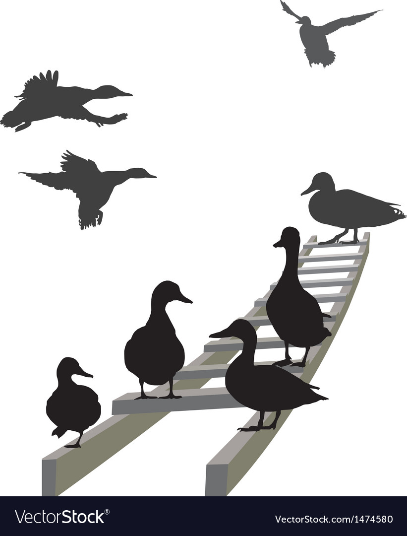 Mallard on a ladder vector | Price: 1 Credit (USD $1)