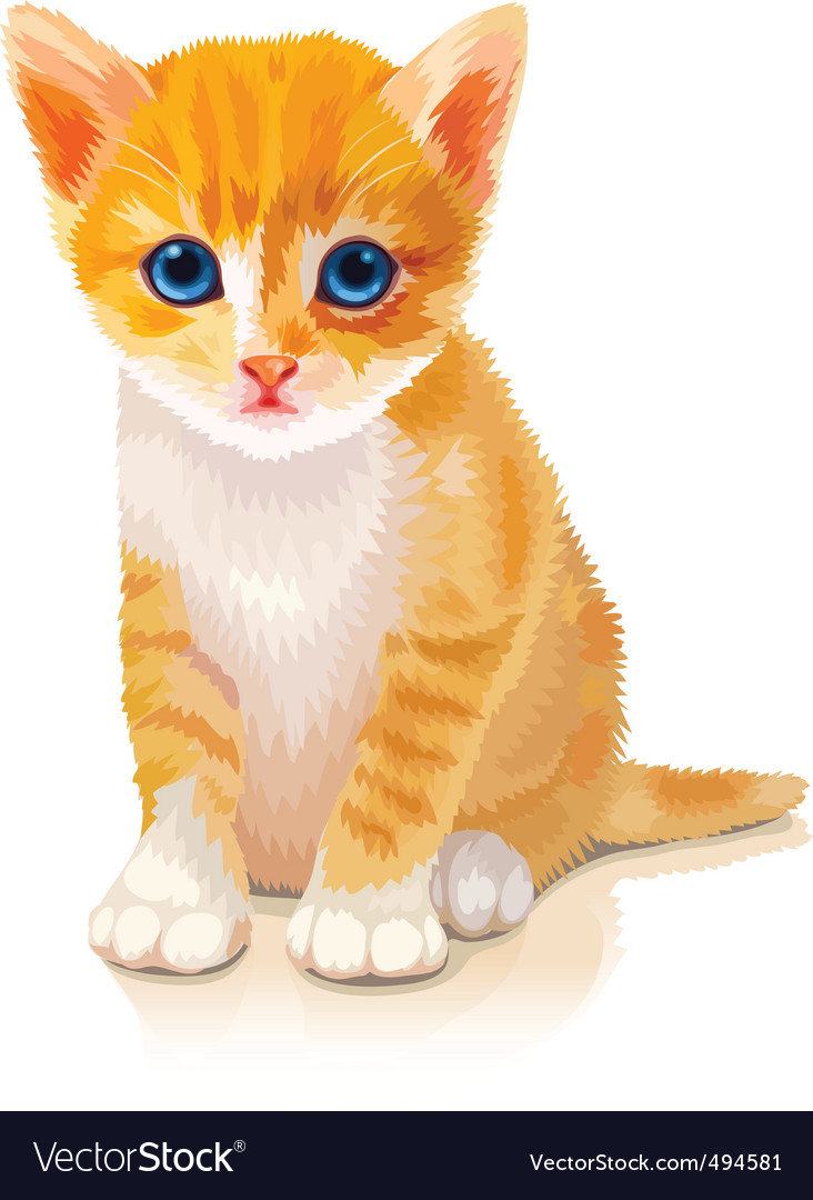 Cute orange kitten vector | Price: 3 Credit (USD $3)