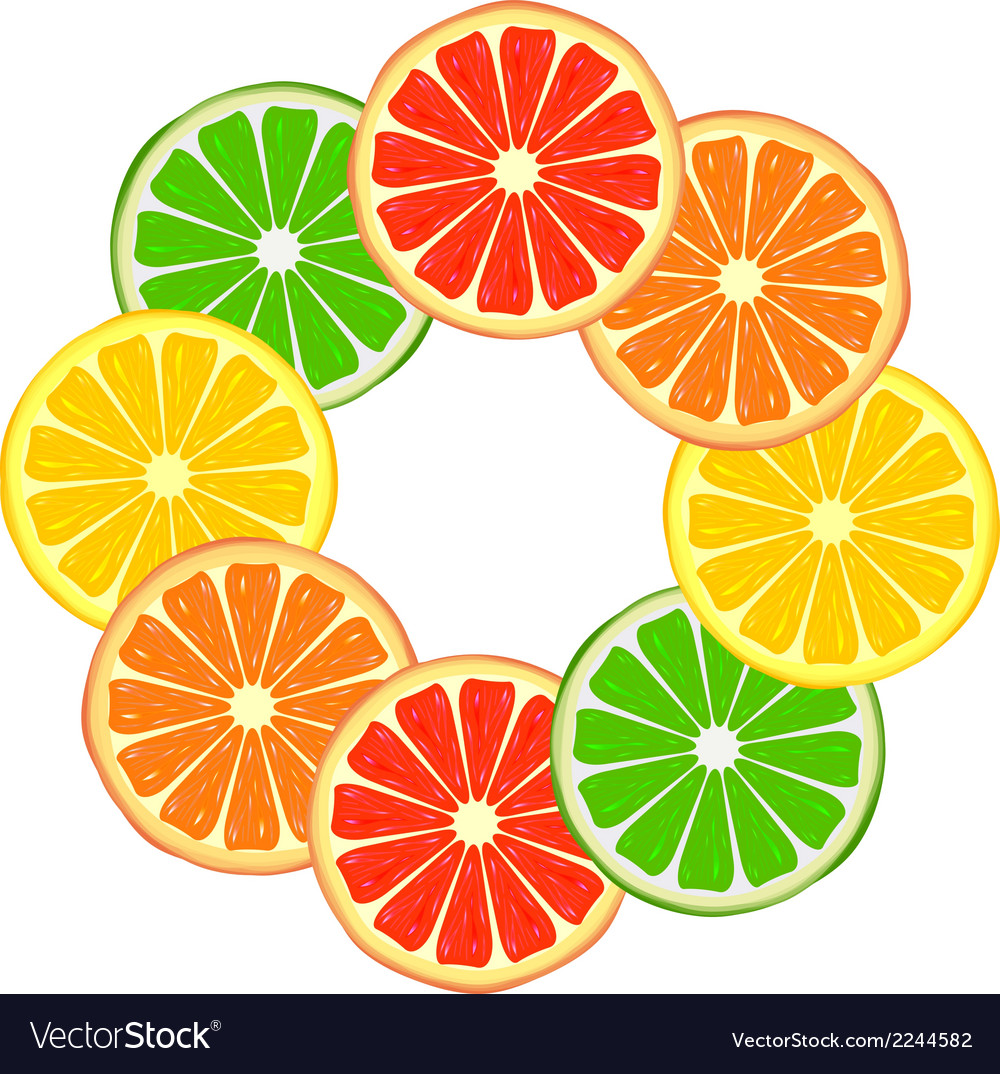 Citrus ring vector | Price: 1 Credit (USD $1)