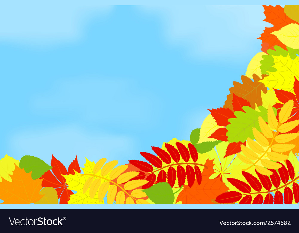 Frame of autumn leaves against the sky vector | Price: 1 Credit (USD $1)