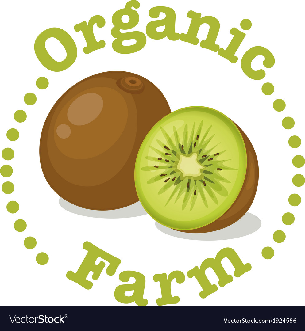 An organic farm label with a kiwi vector | Price: 1 Credit (USD $1)